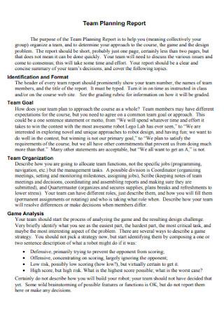Team Planning Report