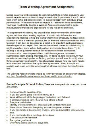 Team Working Agreement Assignment Template