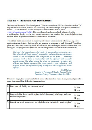 Transition Plan Development