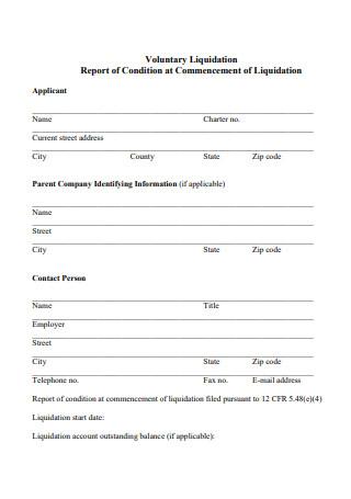 Voluntary Liquidation Report