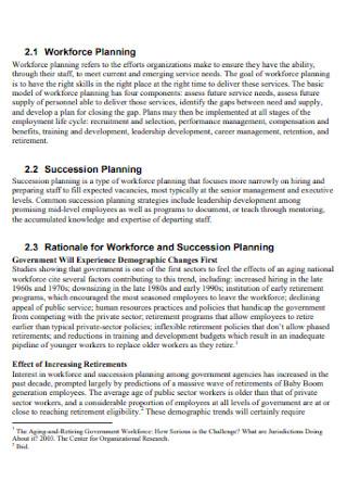 Workforce Planning Report