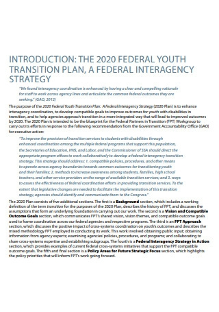 Youth Transition Plan