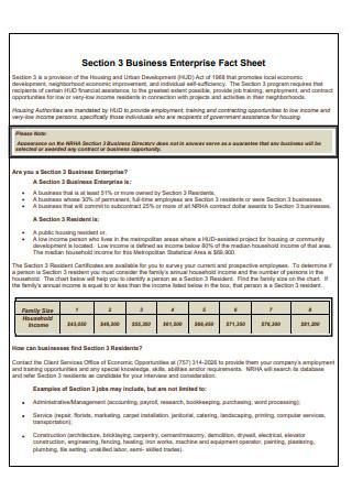 Business Enterprise Fact Sheet