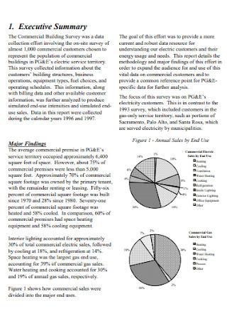 Commercial Building Survey Report