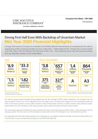 Company Fact Sheet Example
