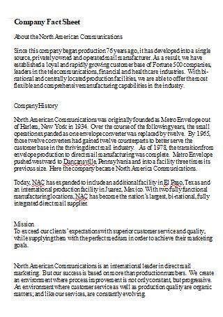 Company Fact Sheet in DOC