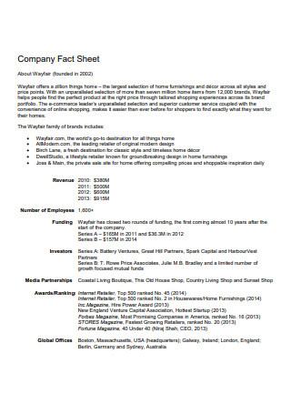 Company Fact Sheet in PDF