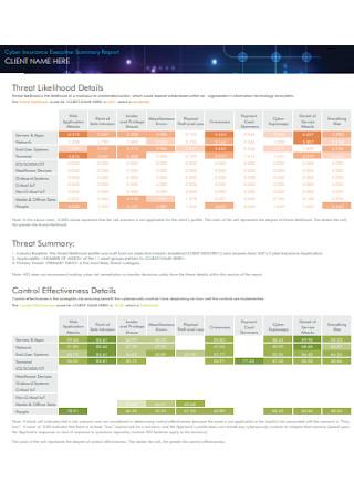 Cyber Insurance Executive Summary Report