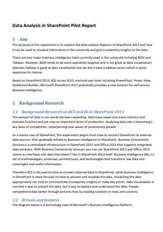 Data Analysis Pilot Report