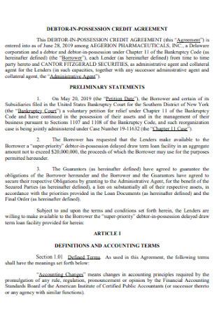 Debtor Possestion Credit Agreement