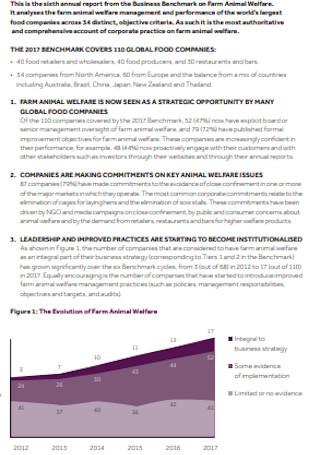 Executive Summary Business Report