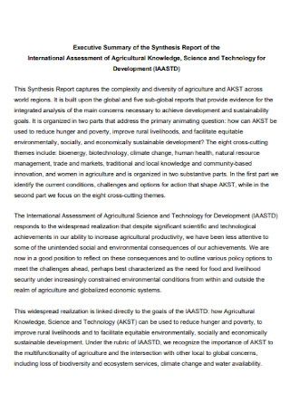 Executive Summary of the Synthesis Report