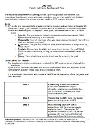 Faculty Individual Development Plan
