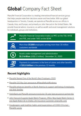 Global Company Fact Sheet