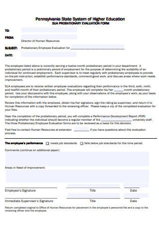 Higher Education Probationary Evaluation Form