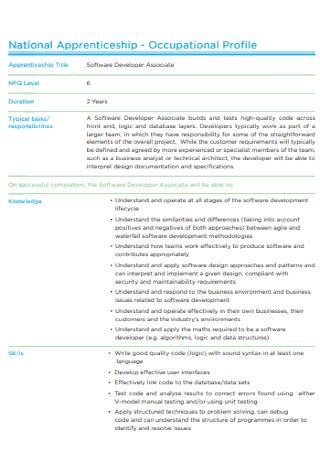 IT Software Associate Profile