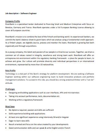 IT Software Engineer Profile