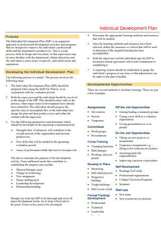 Individual Development Plan Format