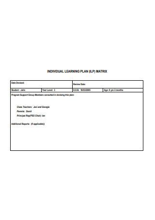 Individual Learning Plan Matrix