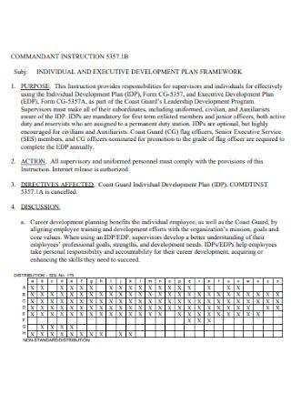 Indivudual and Excutive Development Plan