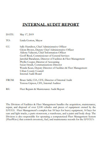 Internal Audit Report Example