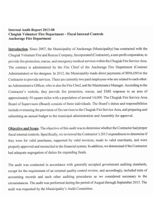 Internal Audit Report in PDF