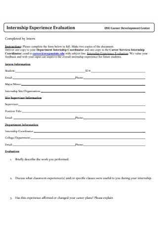 Internship Experience Evaluation Template