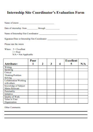 Internship Site Coordinator Evaluation Form