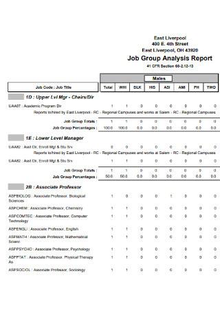 Job Group Analysis Report