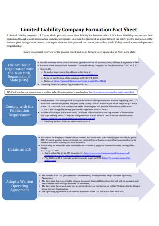Limited Liability Company Formation Fact Sheet