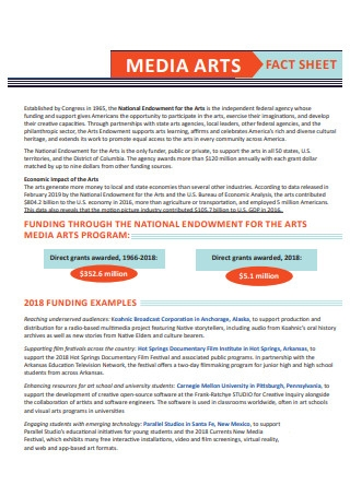 Media Arts Fact Sheet