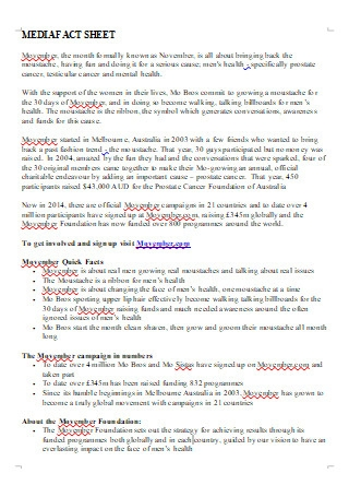 Media Fact Sheet in DOC