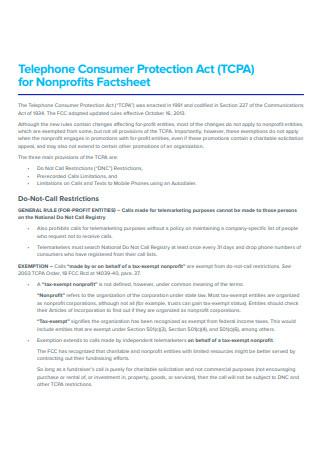 Non Profit Fact Sheet Example