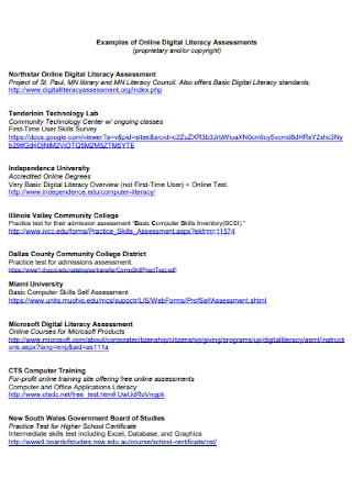 Online Digital Literacy Assessment