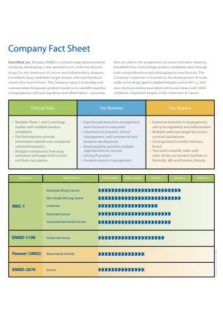 Printable Company Fact Sheet