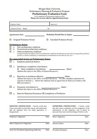 Probationary Evaluation Form