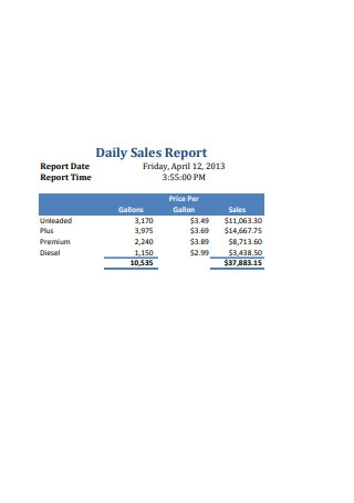 Professional Daily Sales Report