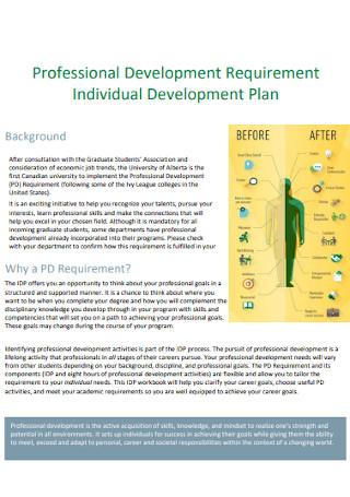 Professional Individual Development Plan