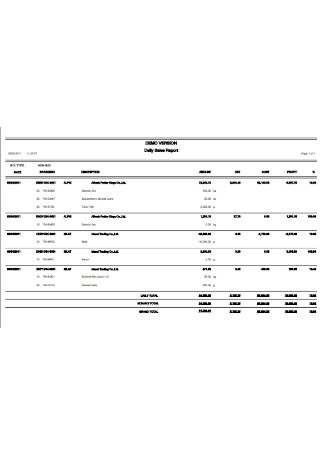 Sample Daily Sales Report Template