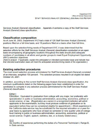 Sample Job Amalysis Report