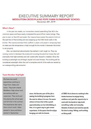 School Executive Summary Report