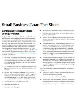 Small Business Loan Fact Sheet