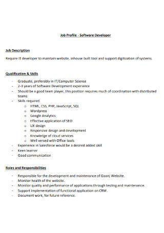 Software Developer Job Profile