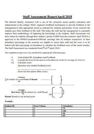 Staff Assessment Report