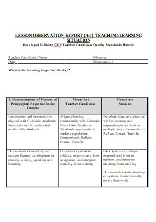 Teacher Lesson Observation Report