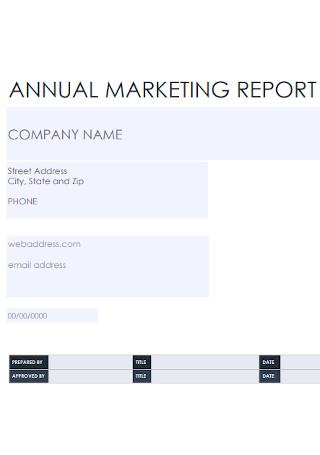 Annual Marketing Report