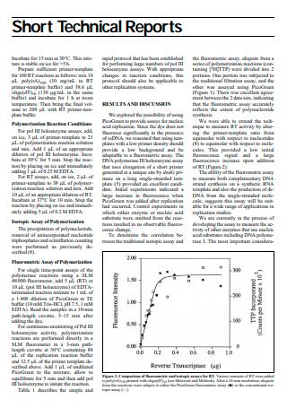 Basic Short Technical Report