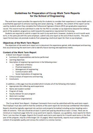 Co op Work Term Report