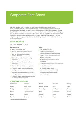 Corporate Fact Sheet Example