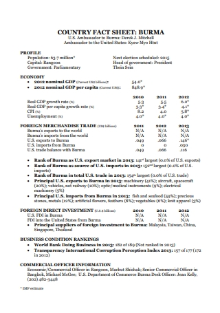 Country Fact Sheet Template